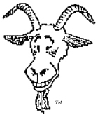The Red Eyed Goat Head Logo of the Island Goats Sailing Society